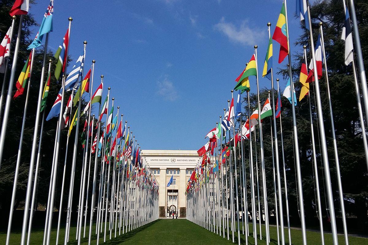 Geneva International Disctrict